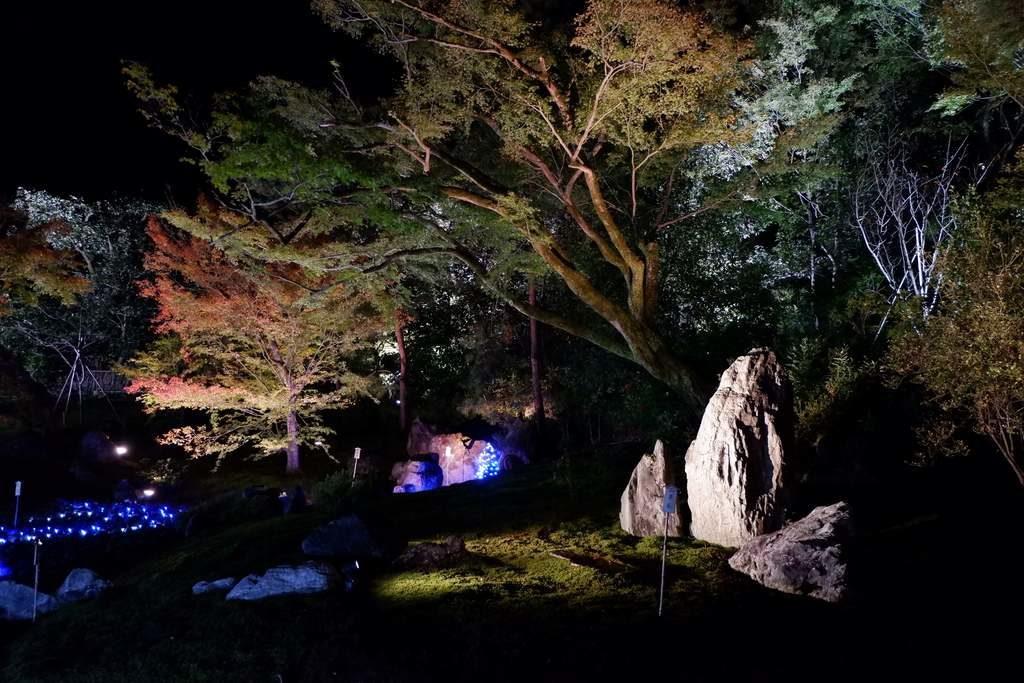 宝厳院獅子吼の庭1