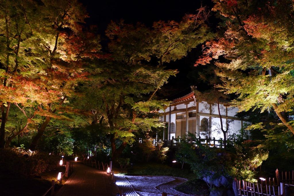 宝厳院獅子吼の庭2